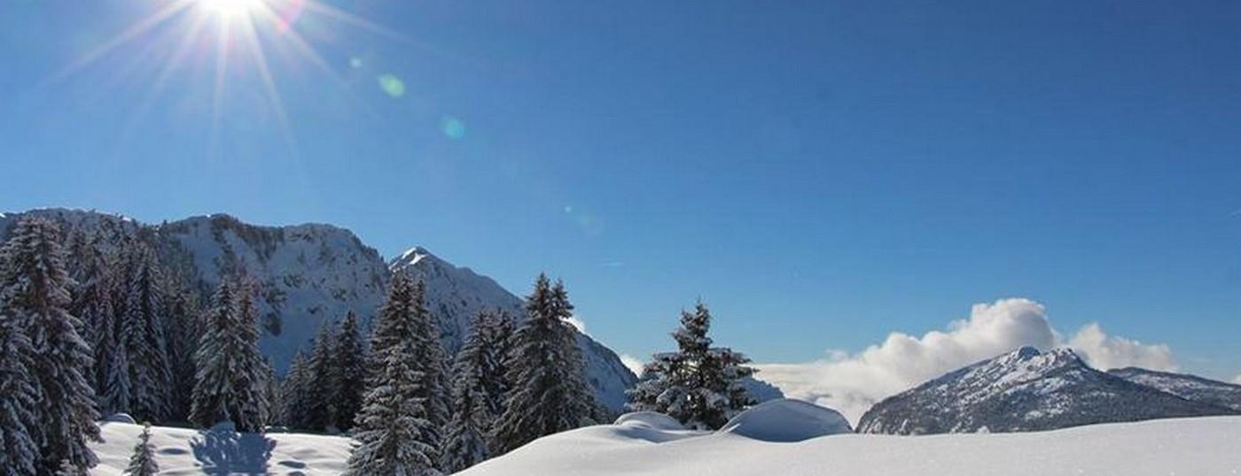 L'hiver <strong> un paysage </strong>hors du commun