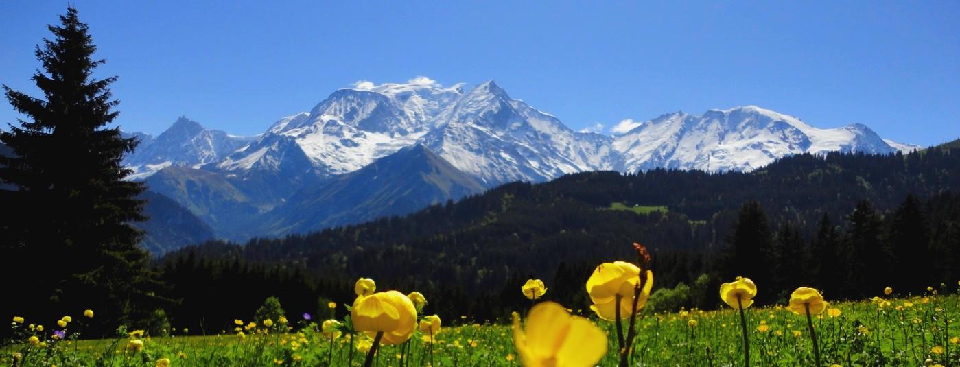Un lieu de sérénité  et d'innocence<strong> au pied du  Mont Blanc </strong>