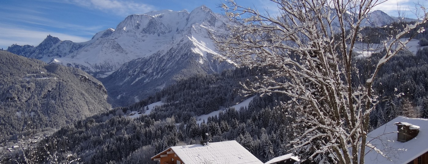 Le spectacle  <strong> du Mont Blanc </strong> à partir de la résidence