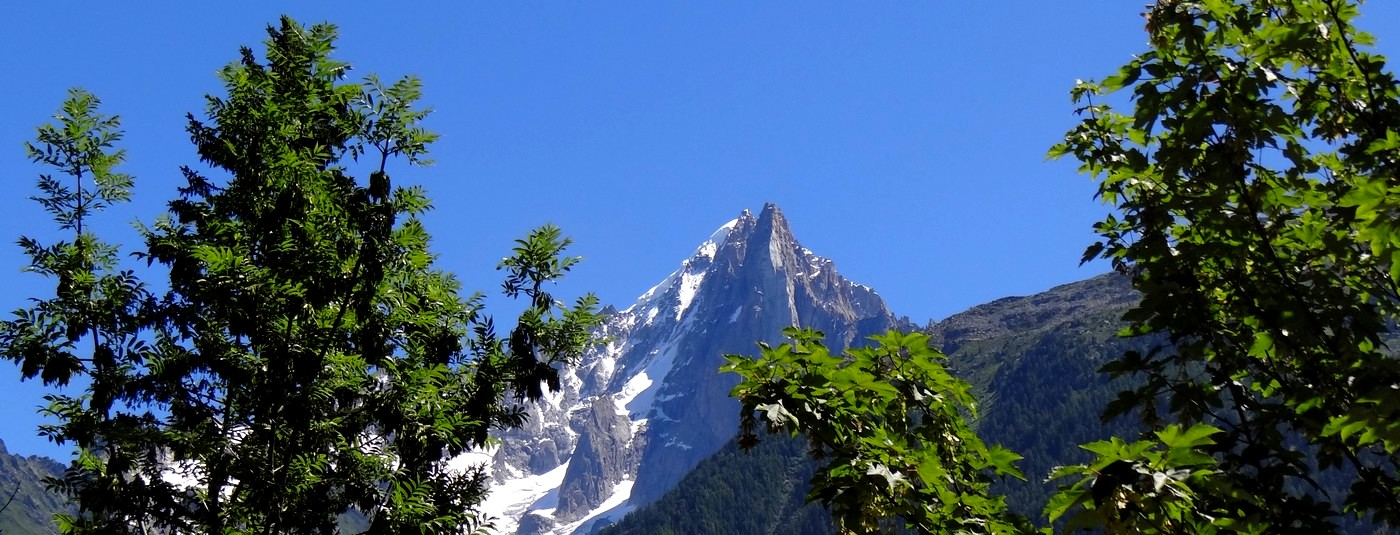 Entre deux rangées d'arbres  <strong>l'Aiguille du Midi  </strong>s'offre à vous