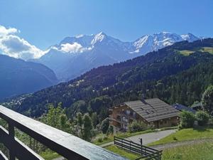 La vue du Mont Blanc